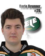 Dario Brunner #29